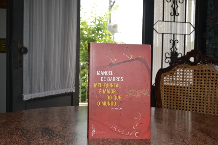 Manoel de Barros 2 - Ricardo Silva