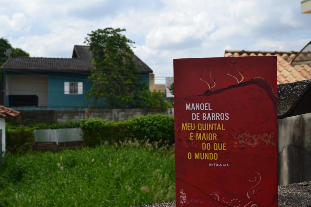 Manoel de Barros 4 - Ricardo Silva